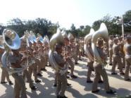 Aggie Band